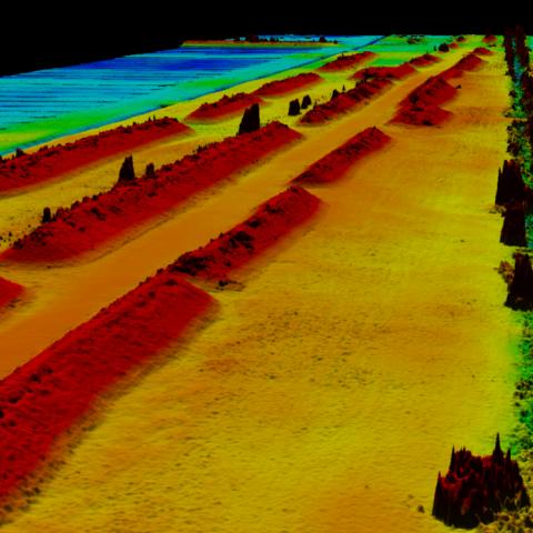 UX5 kartografavimo rezultatų fragmentas - Durpynas