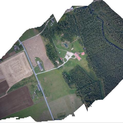UX5 kartografavimo rezultatų fragmentas - Ortofoto